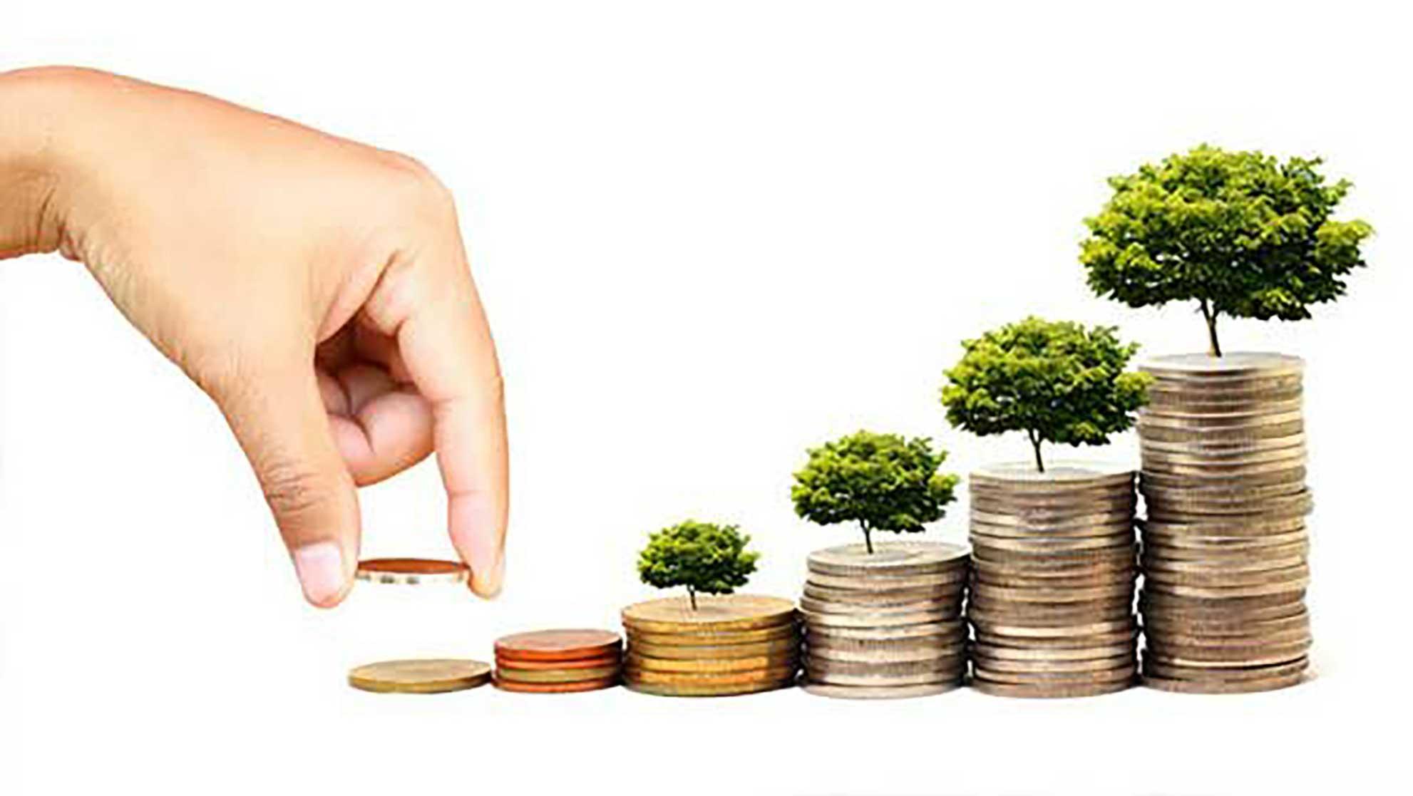 هر قانونی که شهامت سرمایهگذاری را کاهش دهد،مفید نخواهد بود-آل محمد